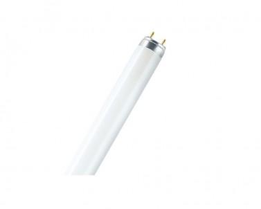 Lineární zářivka Lumilux FLUORA 18W/77 T8 G13 Osram