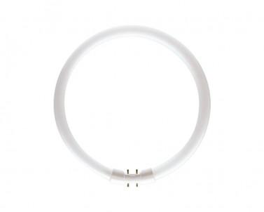 Zářivková trubice Philips Master TL5C circular 40W/840 42-233